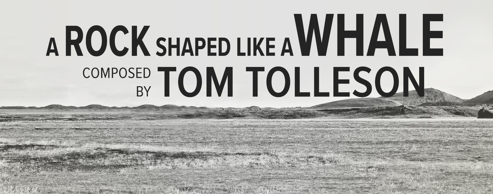 Tom Tolleson